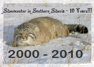 Sibecocenter in Southern Siberia - 10 Years!